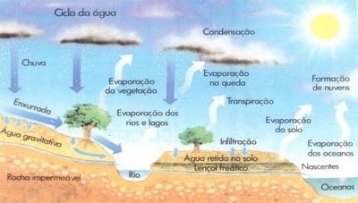 Serviço Geológico do Brasil