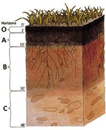 o que é e como se forma o solo